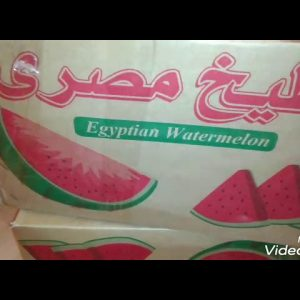 Let eat water melon guys