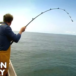 Fishing for Conger Eel | Gordon Ramsay