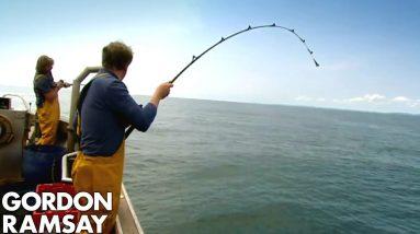 Fishing for Conger Eel | Gordon Ramsay