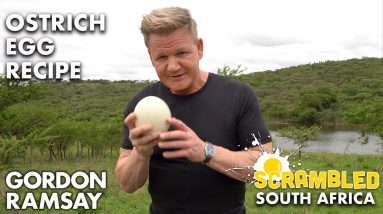 Gordon Ramsay Makes OSTRICH Scrambled Eggs In South Africa | Scrambled