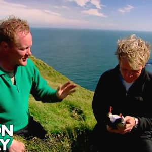 Hunting Puffins On The Edge Of A Cliff In Iceland | Gordon Ramsay