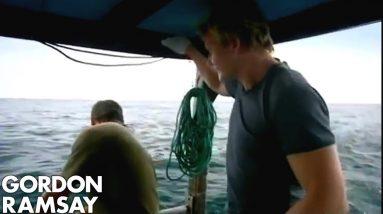 Shark Bait, Long line fishing | Gordon Ramsay