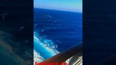 Amazing view in the middle of Ocean fresh air#shorvideo